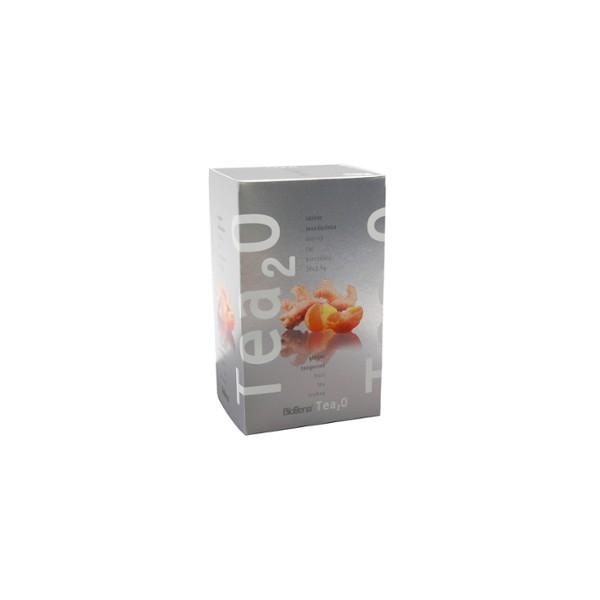 Biogena Čaj Tea2O Zázvor + Mandarinka n.s. 20 x 2,5 g Biogena 16149