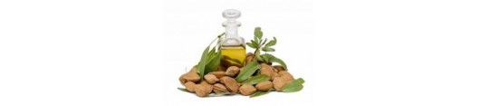 Wellness - mandlový olej