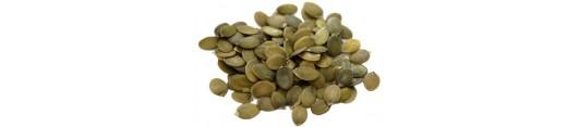 Sušená semena